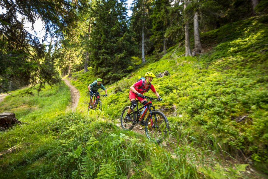 Mountainbike, Mountainbike Reise, Mountainbiken, Mountainbiker, Mountainbikerin, Mountainbikinig, Mountainbike Urlaub, Mountainbike Touren, eMountainbike, Mountains, AllMountain, Bikehotels Südtirol, Südtirol, Trail, Antrieb, Region4=1