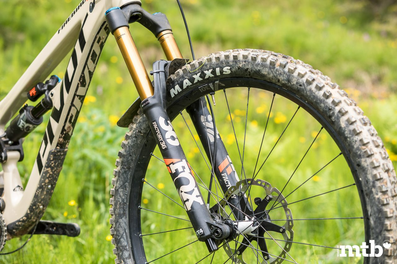 Test, PIVOT FIREBIRD 29 XT/XTR PRO, MTB, Tour, Trail, All Mountain, Enduro, Fully, Test, Biketest, Mountainbike Magazin, world of mtb
