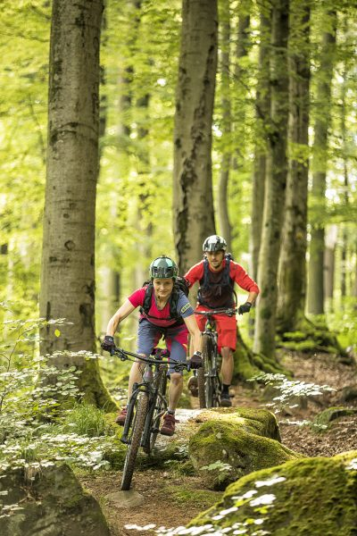 Region, Pfälzerwald, Reise, Reisebericht, Bikepark, world of mtb, world of mtb Magazin, worldofmtb, Mountainbike Magazin, MTB, Bike, Fahrrad, Bike-Sport, Radsport, Bikerin, Biker, Bikerinnen, Mountainbikerin, Mountainbiker, Mountainbike, Mountainbiken, Mountainbiking, Enduro, All-Mountain, Trail, Flow Trail, Singletrail, Biketour