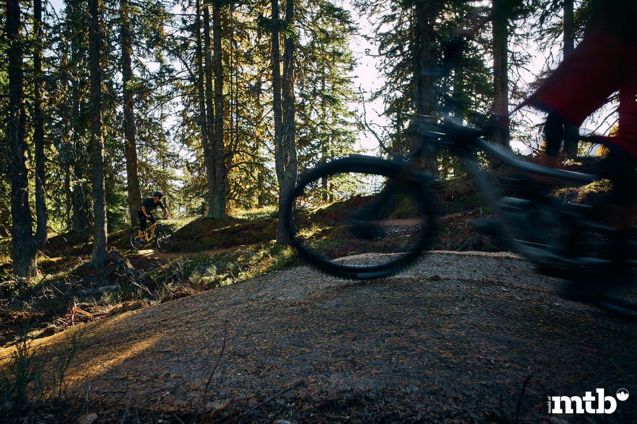 Bikepark Planai Schladming Flow Trail und uphill Trail