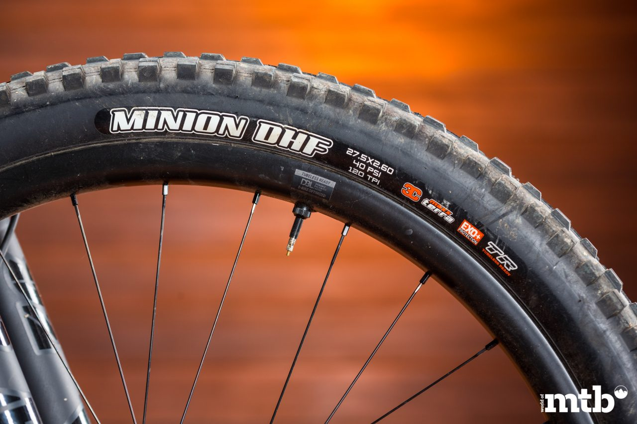 Test: Giant Reign E+ 0 Pro E-Bike 2020 Reifen