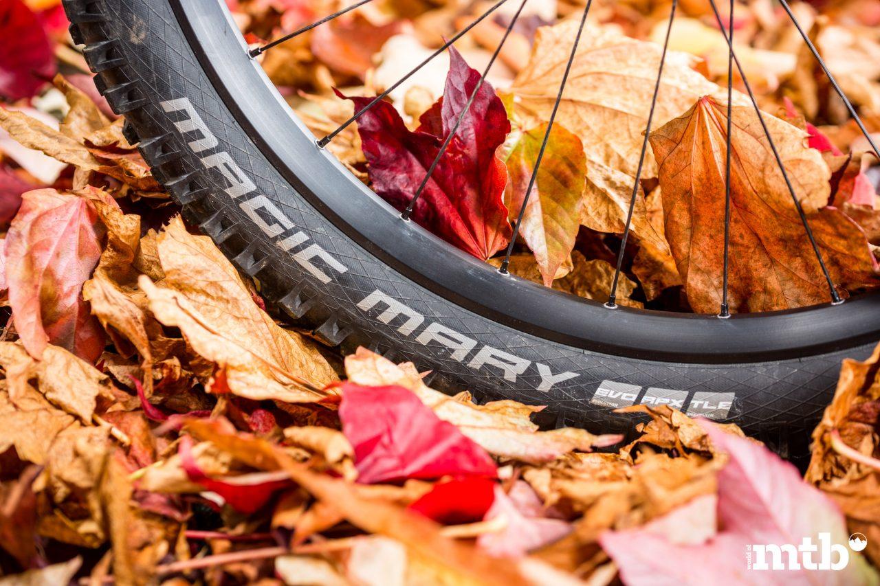 Test: Greyp G6.2 Expert FS E-Bike 2020 Reifen