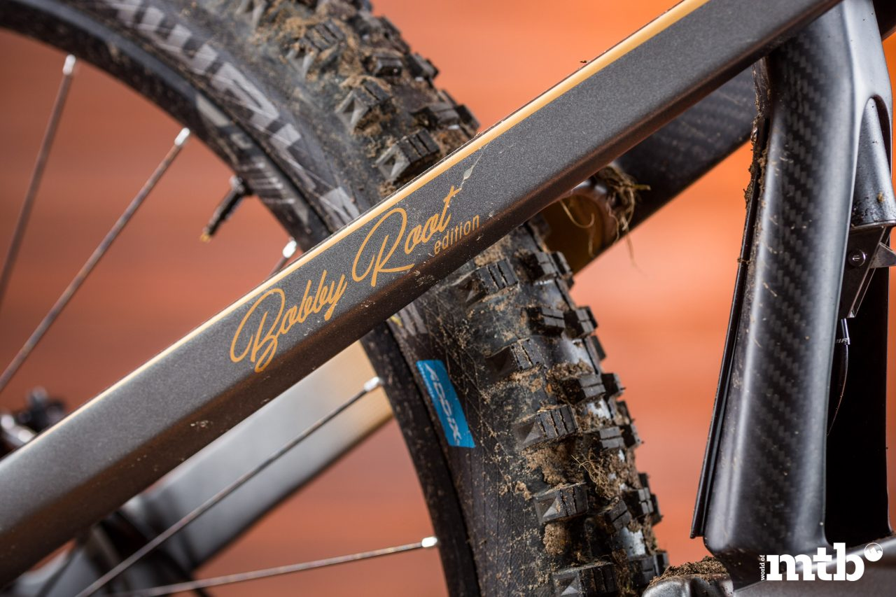 Test: M1 Das Spitzing Evolution Bobby Root Edition E-Bike 2020 Bobby Root