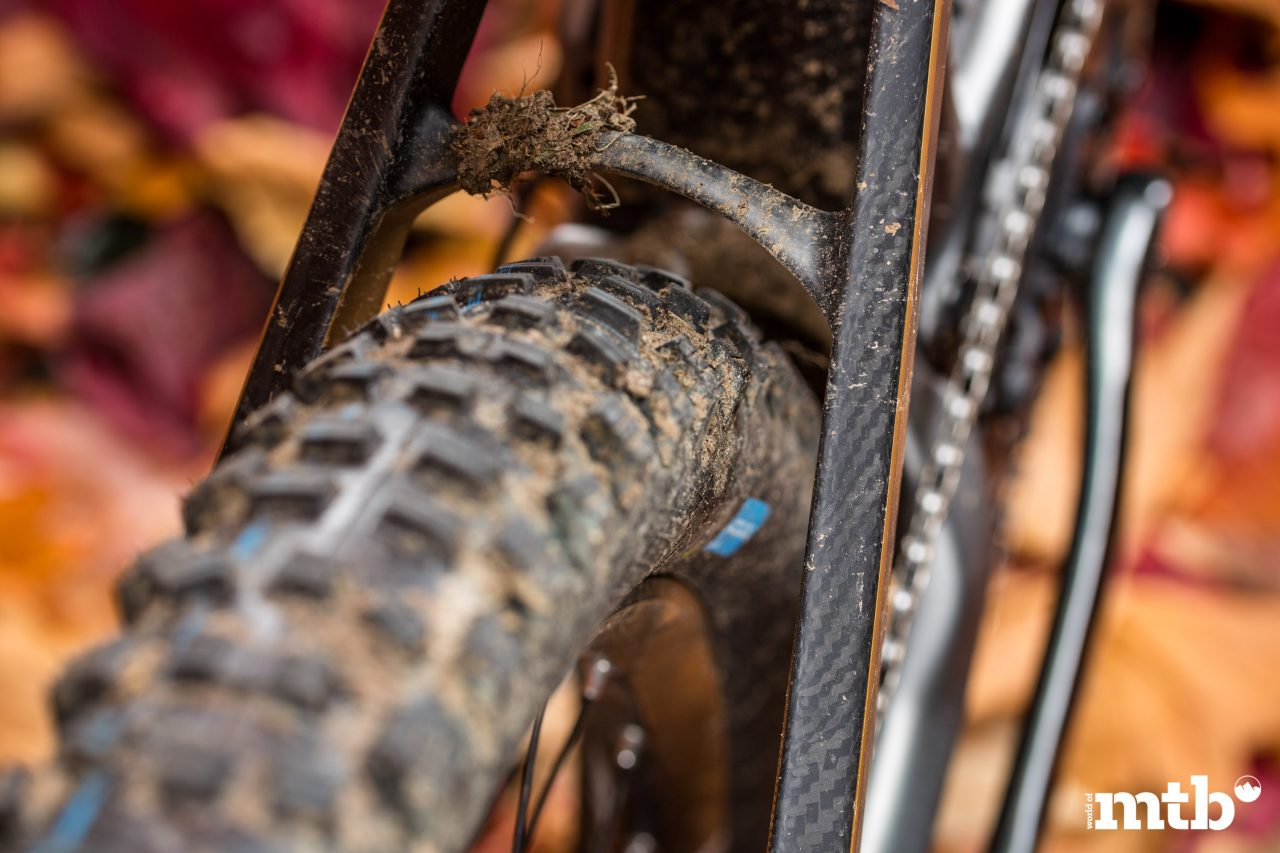 Test: M1 Das Spitzing Evolution Bobby Root Edition E-Bike 2020 Reifen