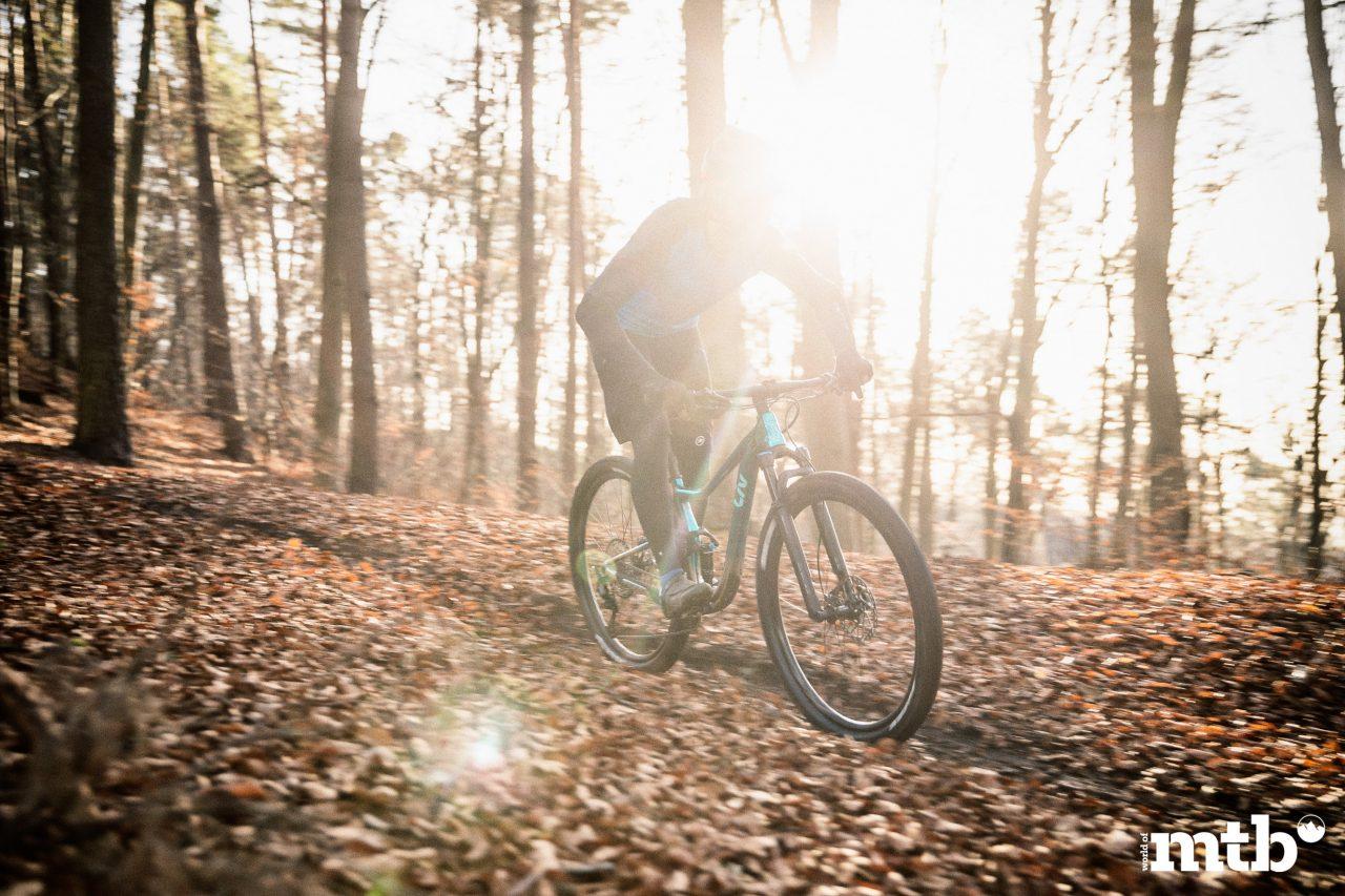 LIV--PIQUE 29 XC Biketest 2020