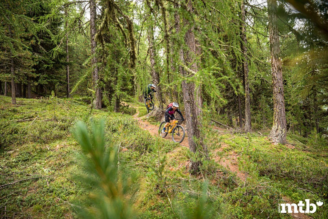 Wer kennt die besten Trails des Wallis Suonen Wege Laerchen