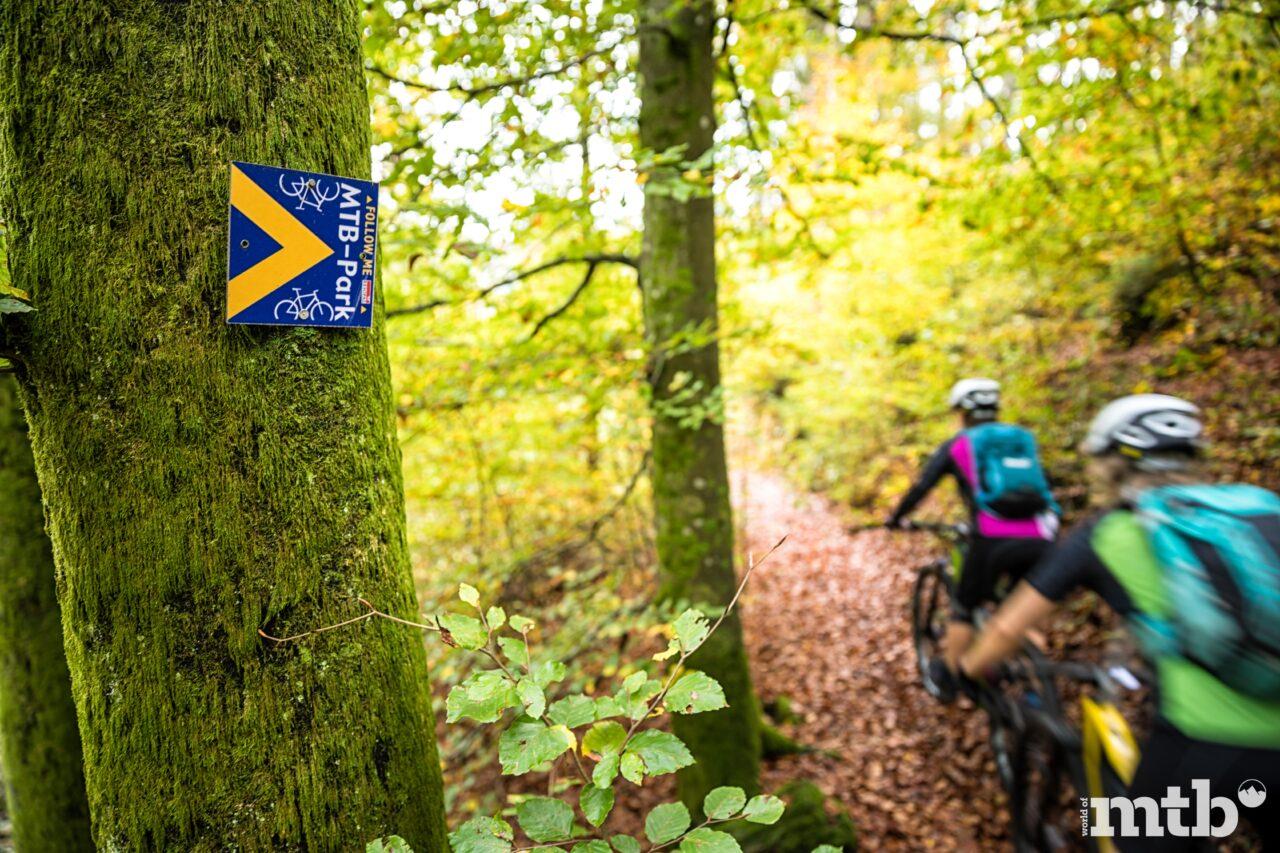 Mountainbikepark Pfälzerwald